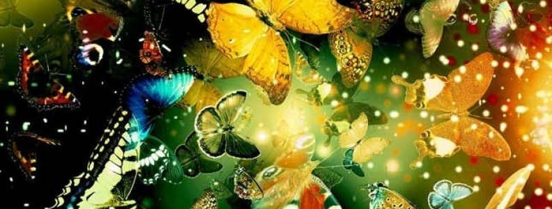 A CASE OF THE BUTTERFLIES:  STRENGTH, WORRY AND THE WISDOM OF LETTING GO